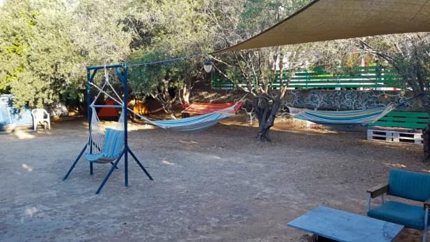Trip Yard Backyard
