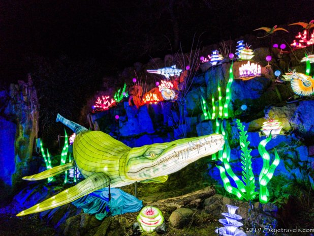 Aquatic Lantern Display