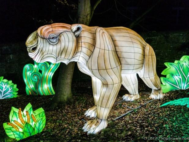 Tapir Lantern
