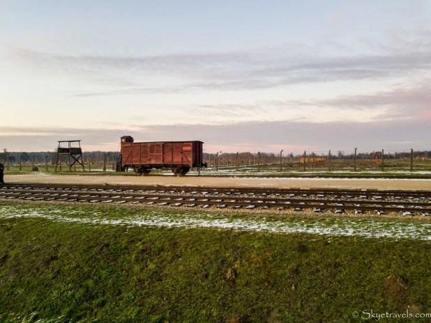 Birkenau Fields