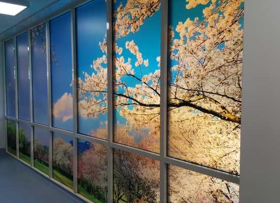 Illuminating wall art in ITU