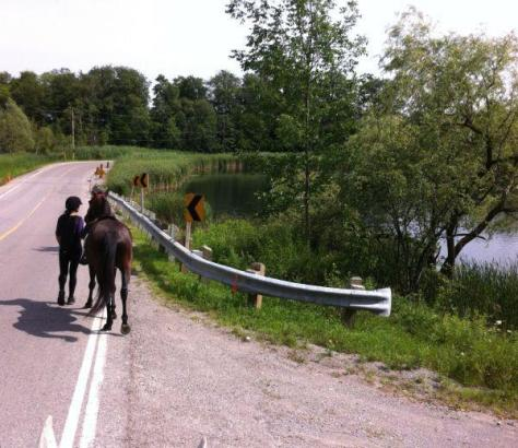 Ana leading Ares past the scary guard rails around Haynes Lake