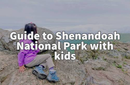 Guide to Shenandoah National Park with kids
