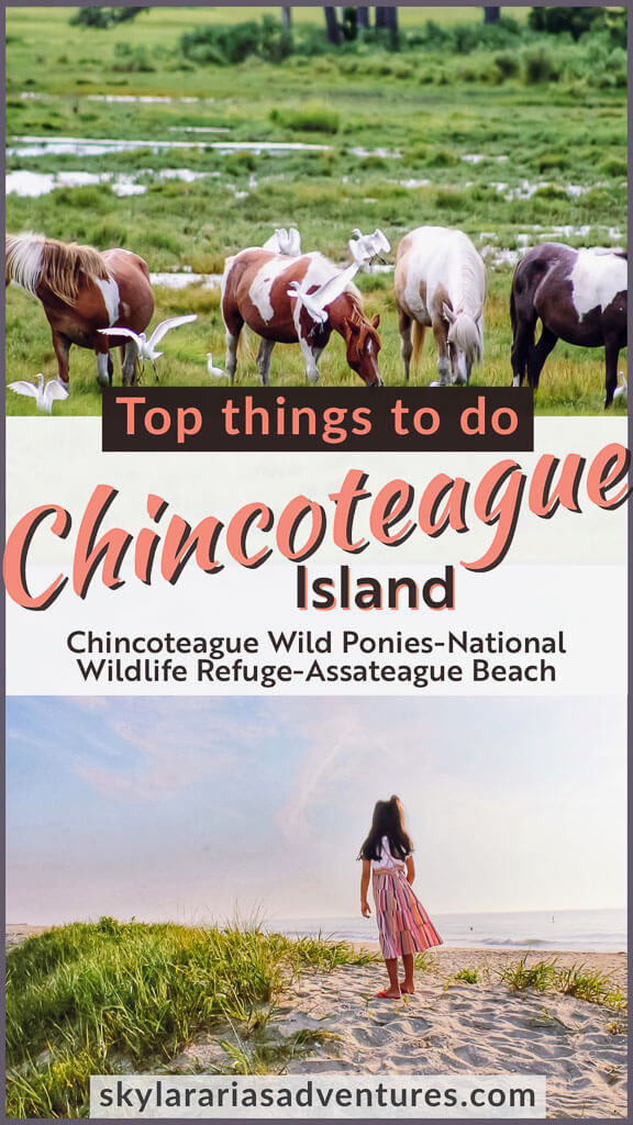 Top things to do on Chincoteague Island