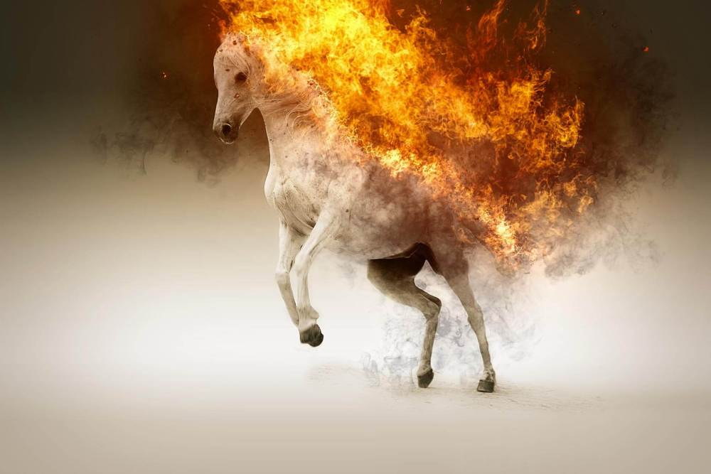 burning_horse.jpg