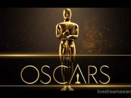 2020 Oscars: what's the destiny of African motion pictures?
