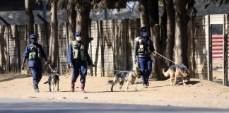 sky news africa Security agents enforce lockdown in Zimbabwe's capital
