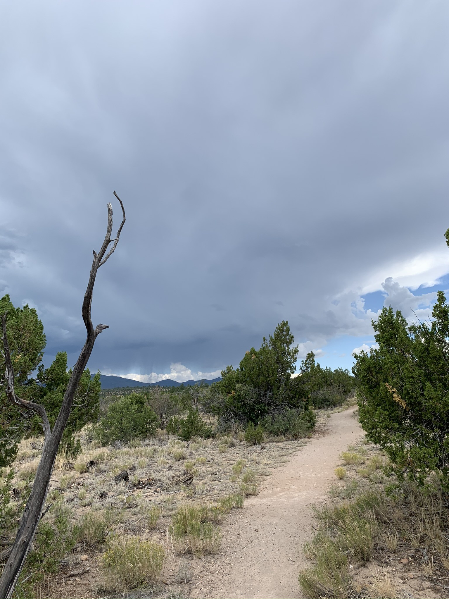 Frey Trail, Bandelier National Monument, New Mexico