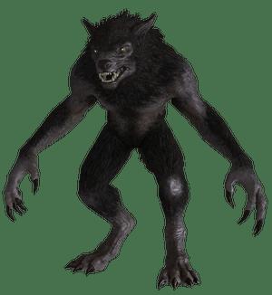 Werwolf Skyrim Wiki