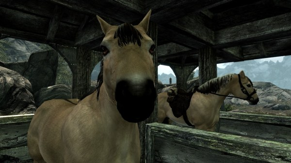 realistic horse breeds # 33