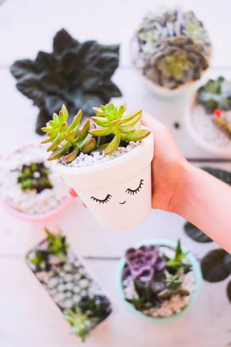plant's pot ideas