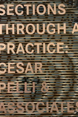"""Book cover of """"Sections Through a Practice"""""""