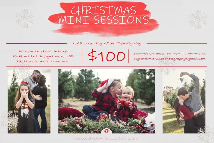 Christmas Mini Ad