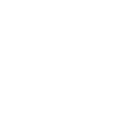 brand-logo-the-author-village