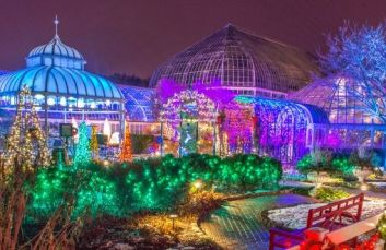 Phipps Winter Flower Show and Light Garden