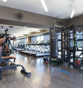 Functional Full Size Fitness Center