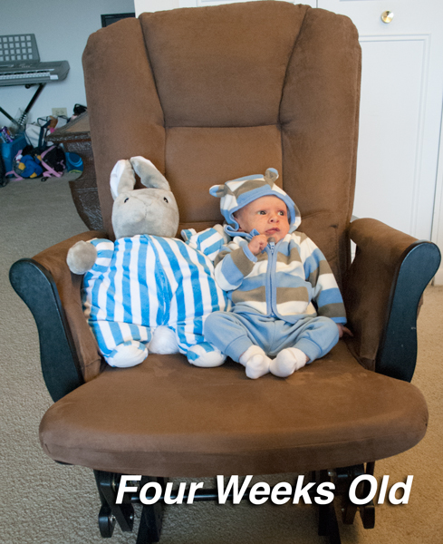 Four-Weeks-Old