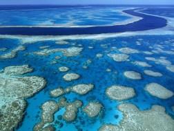Great Barrier Reef Marine Park Queensland