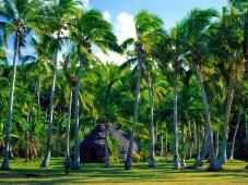 Hut- Lifou - Nuova Caledonia