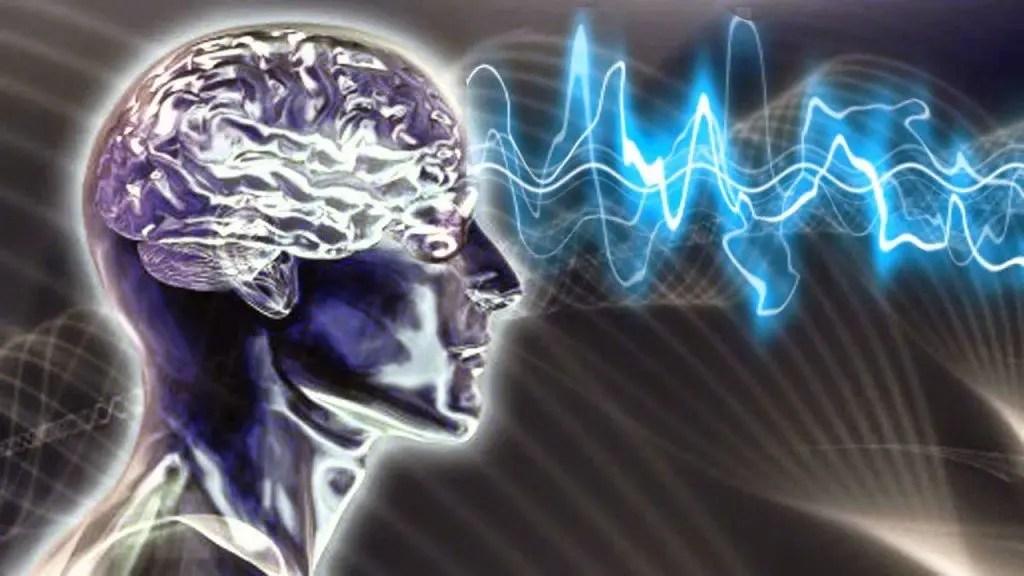 brainsoul