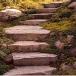 Steps 2017