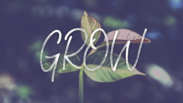 Grow in Faith Image