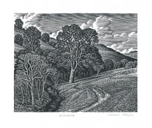Loscombe Howard Phipps wood engraving 4 x 5 inches £225 framed