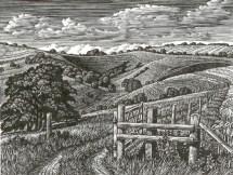 Malacombe Bottom Howard Phipps wood engraving £225 framed