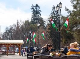Magyar zászlók Sepsiszentgyörgyön
