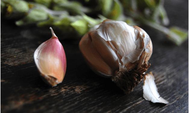 6 Redenen Waarom is het Eten van Knoflook op een Lege Maag Goed