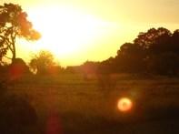 Beautiful sunset on Saturday afternoon.