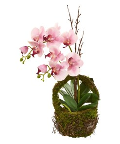 Nearly Natural 4290 Phalaenopsis Orchid Artificial Arrangement in Twig Basket