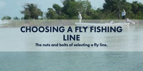 Choosing a Fly Fishing Line