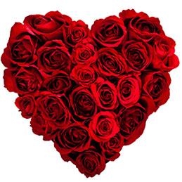 c4834a3510fa OT43  Roses Are Thread…