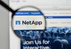 Anna Schlegel, NetApp, and Finding Gold in Globalization