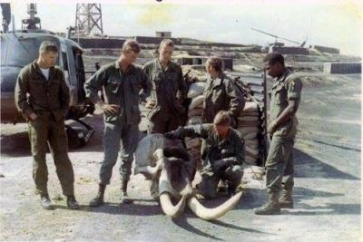 Helicopter Crew Recovers an Elephant Skull From Enemy Territory