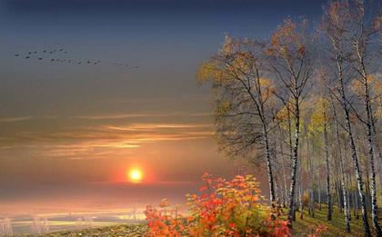 Осень Журавли