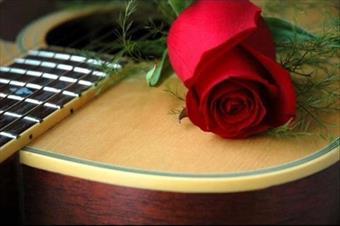 гитара-цветок