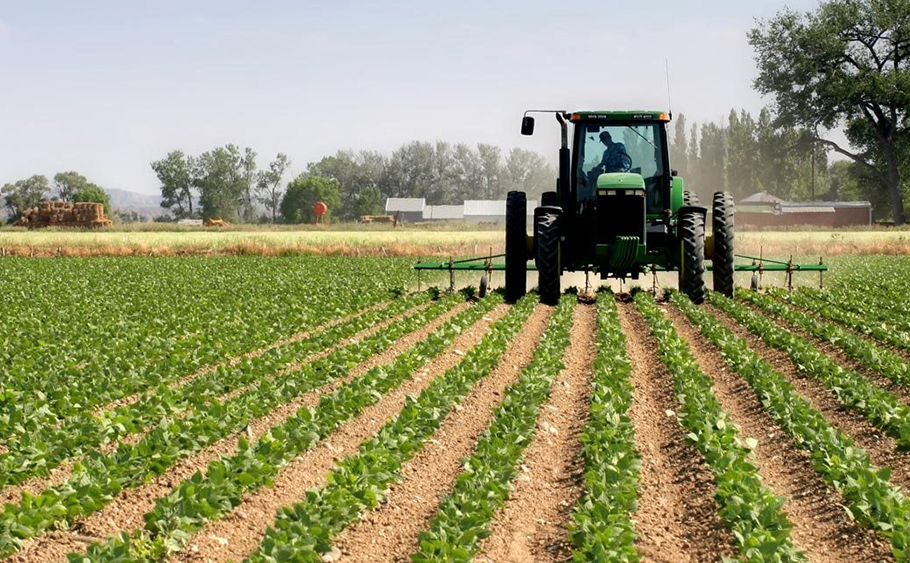 CBN to increase loans to agricultural sector to 10% of total bank credit