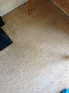 Carpet Stain removal Daventry