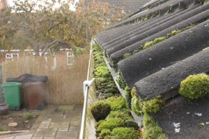 Gutter Cleaning Towcester