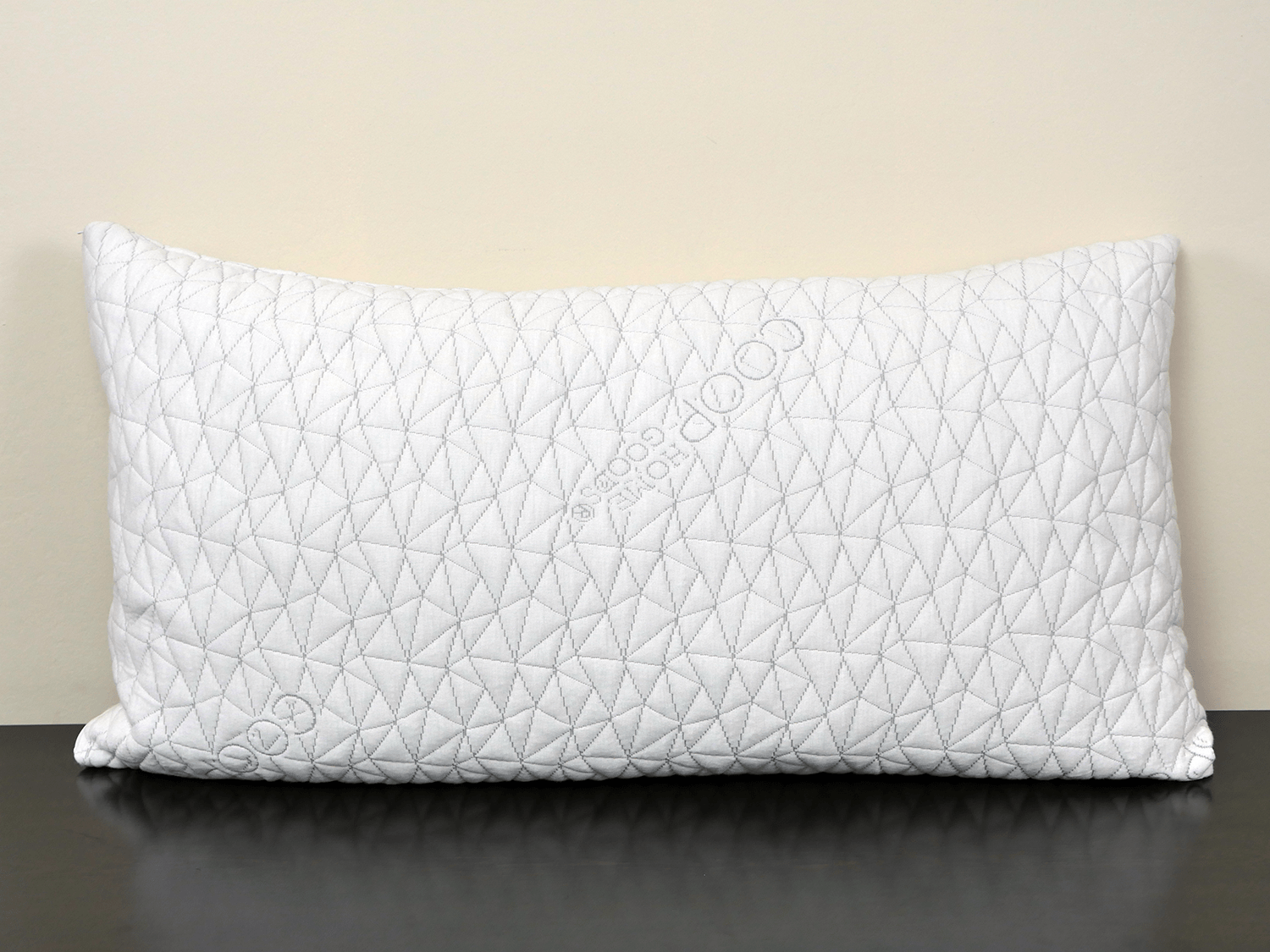 coop home goods pillow review 2021