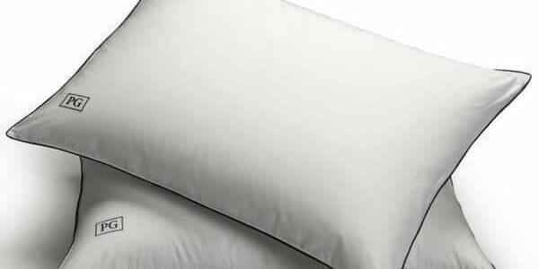 pillow guy goose down pillow
