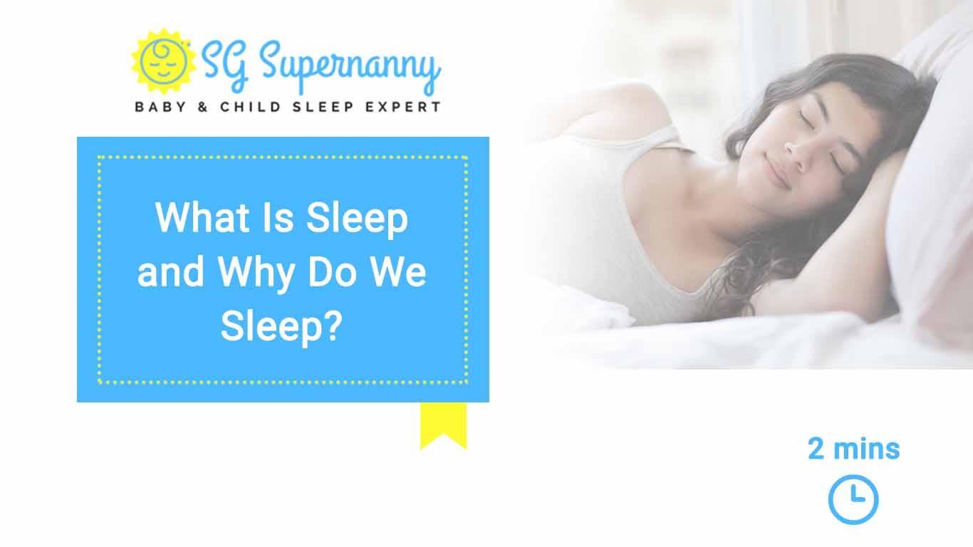 What Is Sleep And Why Do We Sleep Web