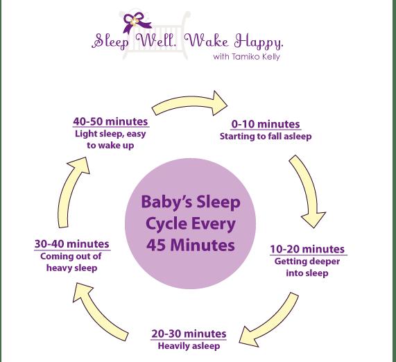Baby Sleep Cycle by Tamiko Kelly of Sleep Well. Wake Happy.