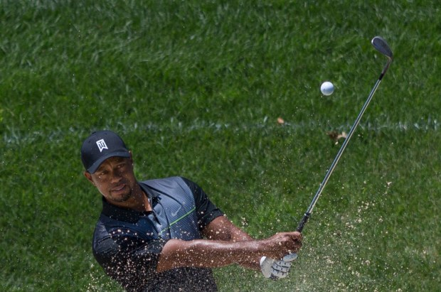 Tiger Woods DUI Drowsy Driving