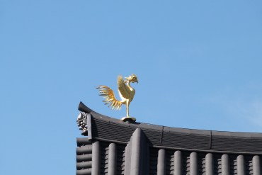 Riiiiiiiise like a phoenix !
