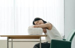 眠豆腐午睡枕