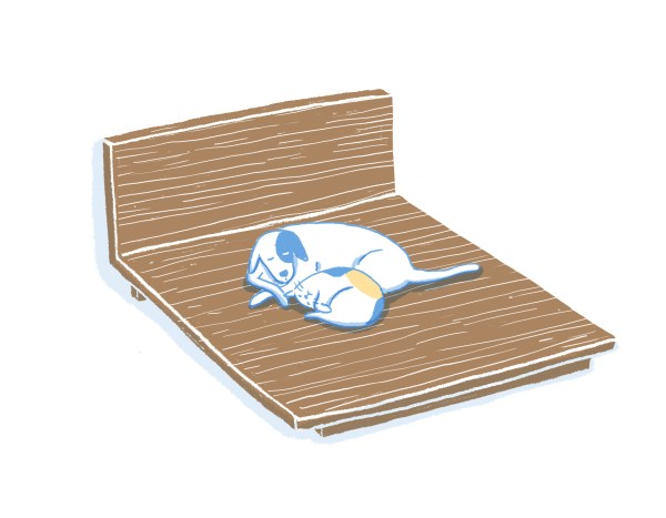 眠豆腐胡桃木床架|標準雙人