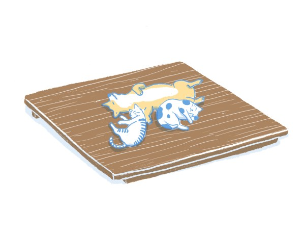 眠豆腐胡桃木床架(無床頭板)|雙人特大